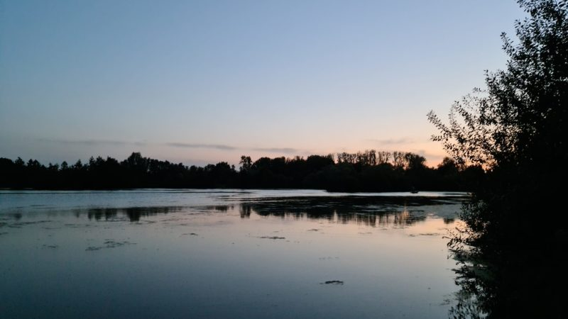 Timmys Lake De Karperhoeve