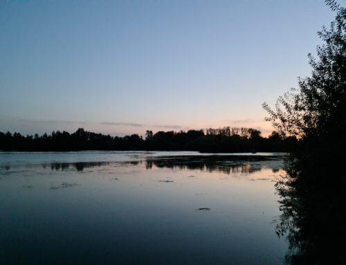 Timmy's Lake, De Karperhoeve, Belgium
