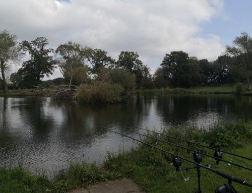 Wigmore Lakes, England
